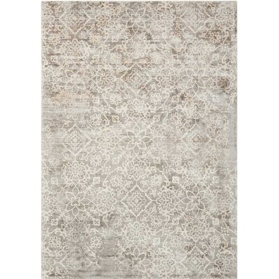 Desert Skies Hand-Loomed Gray Area Rug Rug Size: 39 x 59