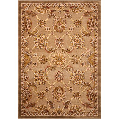 Bel Air Buckingham Brown Area Rug Rug Size: Rectangle 36 x 56