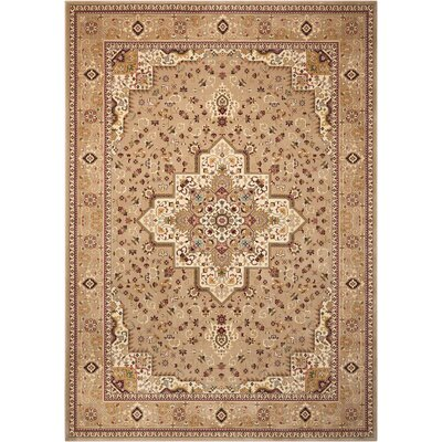 Antiquities Beige Area Rug Rug Size: Rectangle 53 x 74