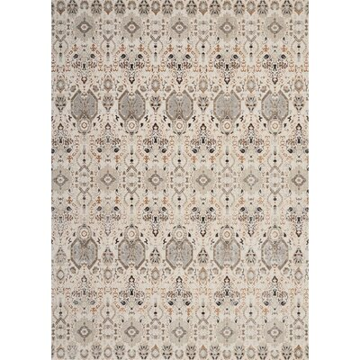 Silver Screen Gray/Slate Area Rug Rug Size: Rectangle 9 x 12