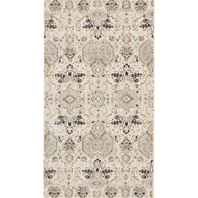 Silver Screen Gray/Slate Area Rug Rug Size: Rectangle 22 x 39
