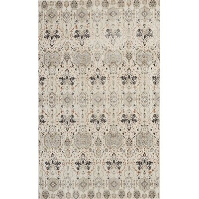 Silver Screen Gray/Slate Area Rug Rug Size: Rectangle 4 x 6
