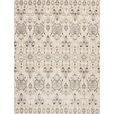 Silver Screen Gray/Slate Area Rug Rug Size: Rectangle 53 x 73