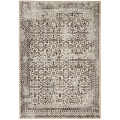 Silver Screen Gray Area Rug Rug Size: Rectangle 53 x 73