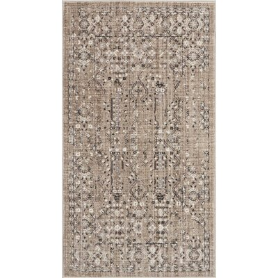 Silver Screen Latte Area Rug Rug Size: Rectangle 22 x 39