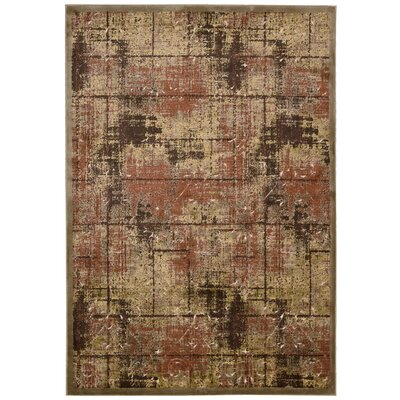 Bel Air Montecito Brown Area Rug Rug Size: 3'6