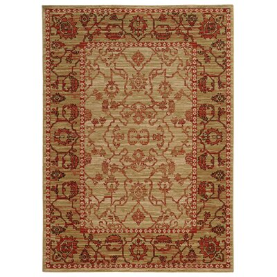 Tommy Bahama Vintage Beige / Red Oriental Rug Rug Size: Rectangle 67 x 96