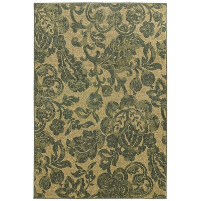 Tommy Bahama Voyage Beige / Blue Floral Rug Rug Size: Rectangle 67 x 96