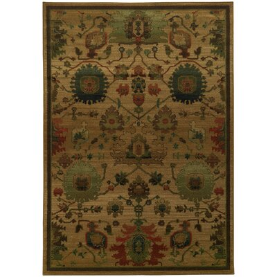 Villa Floral Oriental Area Rug Rug Size: Rectangle 53 x 76
