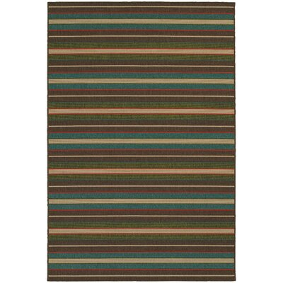 Seaside Hand-Woven Indoor/Outdoor Area Rug Rug Size: Rectangle 37 x 56