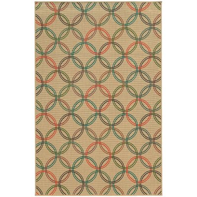 Seaside Indoor/Outdoor Area Rug Rug Size: Rectangle 53 x 76