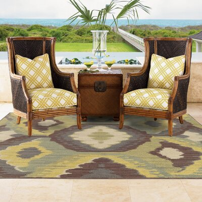 Tommy Bahama Cabana Brown / Blue Abstract Indoor/Outdoor Area Rug Rug Size: Rectangle 67 x 96