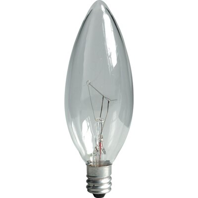 30W Incandescent Light Bulb