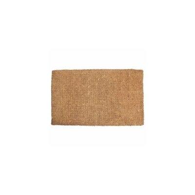 Plain Doormat Rug Size: 22 x 36