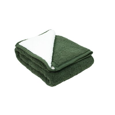 Plush Reversible Sherpa Throw Color: Green