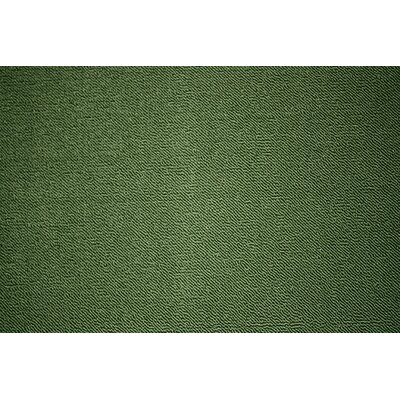 Berber Green Area Rug Rug Size: 110 x 37