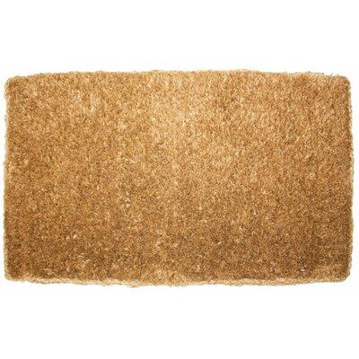 Plain Doormat Rug Size: 16 x 26