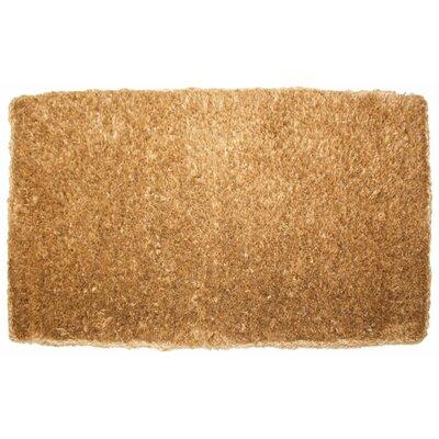 Plain Doormat Rug Size: 2 x 3