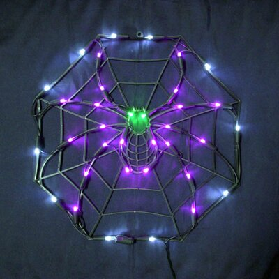 "18"" Halloween Spider & Web with 35 Multicolored Lights"