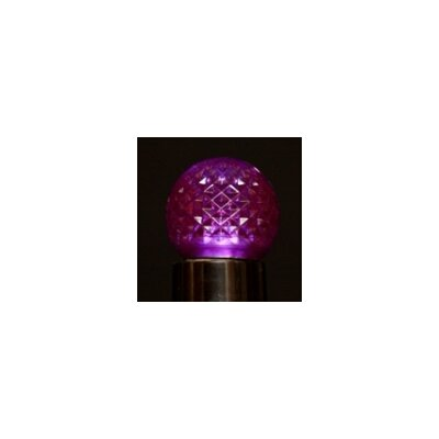 LED Light Bulb (Pack of 25) Bulb Color: Purple