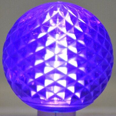 Queens of Christmas 1.7W LED Light Bulb (Pack of 10) - Bulb Color: Purple