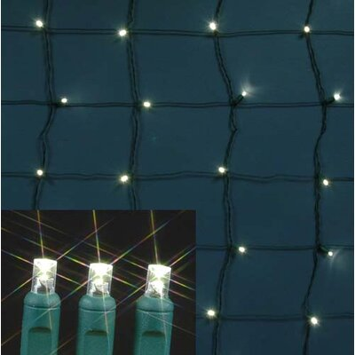 108 Light LED Net Light Bulb Color: Warm White, Twinkle: Non - Twinkle