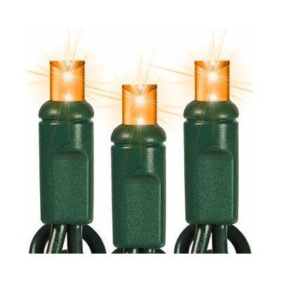 50 Light LED String Light Bulb Color: Amber, Spacing: 5.5