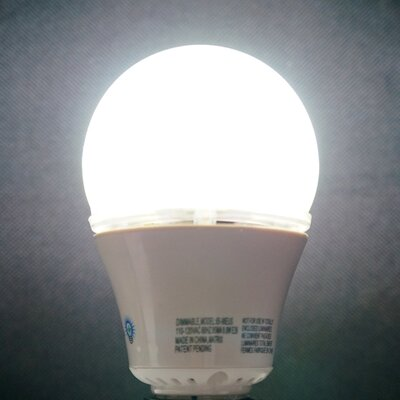 10W LED Light Bulb Bulb Color Temperature: Daylight (6000K)
