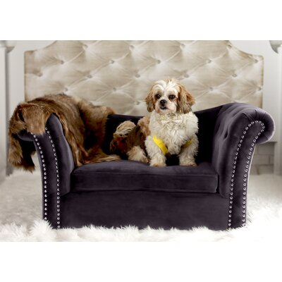 Haven Dachshund Dog Sofa Color: Dark Gray