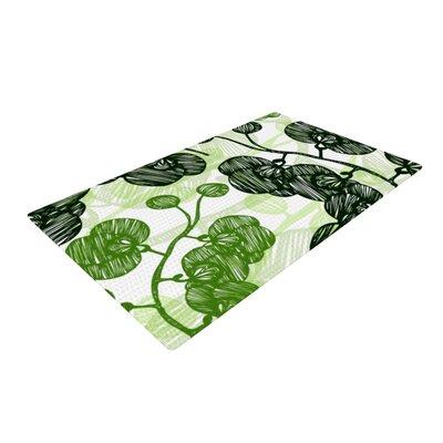 Anchobee Hikae Cream/Green Area Rug Rug Size: 4 x 6