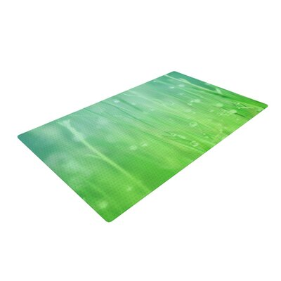 Beth Engel Magic Happens Here Green Area Rug Rug Size: 4 x 6