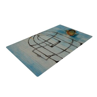 Brittany Guarino Bird Cage Gray/Blue Area Rug Rug Size: 4 x 6