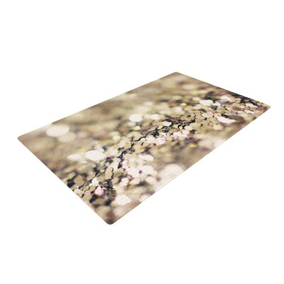 Beth Engel Pirates Treasure Gold Area Rug Rug Size: 2 x 3
