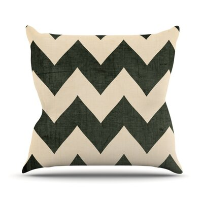 Vintage Vinyl Outdoor Throw Pillow Size: 16 H x 16 W x 3 D