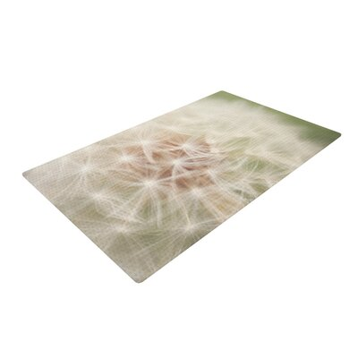 Catherine McDonald Dandelion White/Green Area Rug Rug Size: 4 x 6