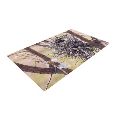 Catherine McDonald Nest Brown Area Rug Rug Size: 4 x 6