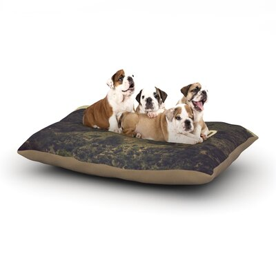 Catherine McDonald Hollywood Dog Pillow with Fleece Cozy Top Size: Large (50 W x 40 D x 8 H)