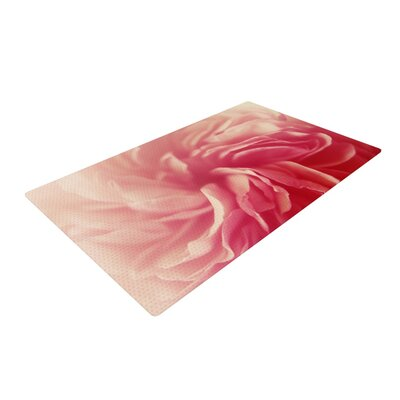 Cristina Mitchell Petals Floral Rose Pink Area Rug Rug Size: 2 x 3