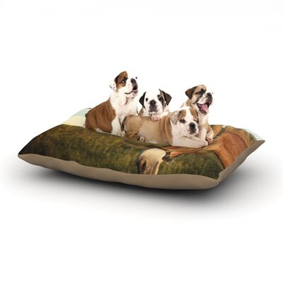 Catherine McDonald Dont Assume Dog Pillow with Fleece Cozy Top Size: Small (40 W x 30 D x 8 H)