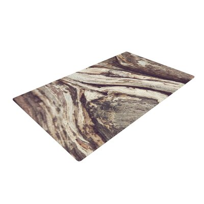 Catherine McDonald Bark Brown Area Rug Rug Size: 4 x 6