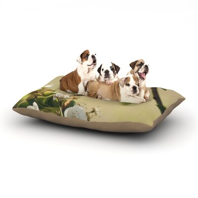 Catherine McDonald Pear Blossom Dog Pillow with Fleece Cozy Top Size: Large (50 W x 40 D x 8 H)