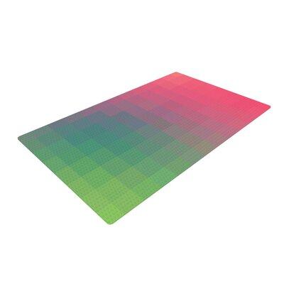 Danny Ivan Gradient Print Green/Pink Area Rug Rug Size: 2 x 3