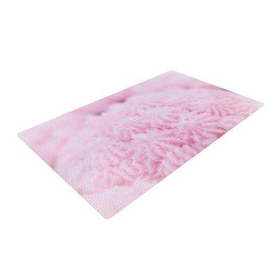 Debbra Obertanec Cupcake Pink Sparkle Pink Area Rug Rug Size: 4 x 6