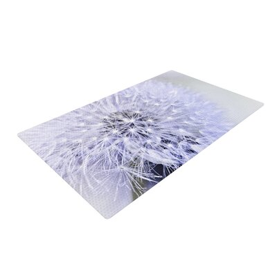 Debbra Obertanec Lavender Wish Flower Purple Area Rug Rug Size: 2 x 3