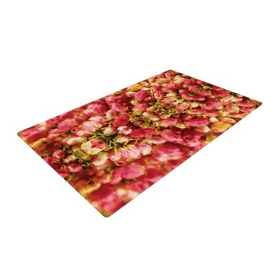 Akwaflorell Close to You Red/Orange Area Rug Rug Size: 2 x 3