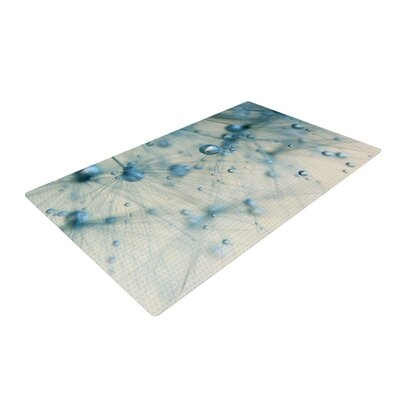 Ingrid Beddoes Pearls White/Blue Area Rug Rug Size: 2 x 3