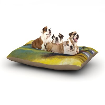 Josh Serafin Sano Surf Dog Pillow with Fleece Cozy Top Size: Large (50 W x 40 D x 8 H)