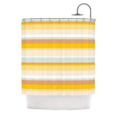 Desert Stripes Shower Curtain