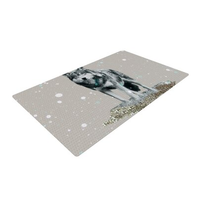 Wolf Gray Indoor/Outdoor Area Rug Rug Size: 2 x 3