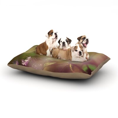 Robin Dickinson Butterfly Kisses Dog Pillow with Fleece Cozy Top Size: Small (40 W x 30 D x 8 H)